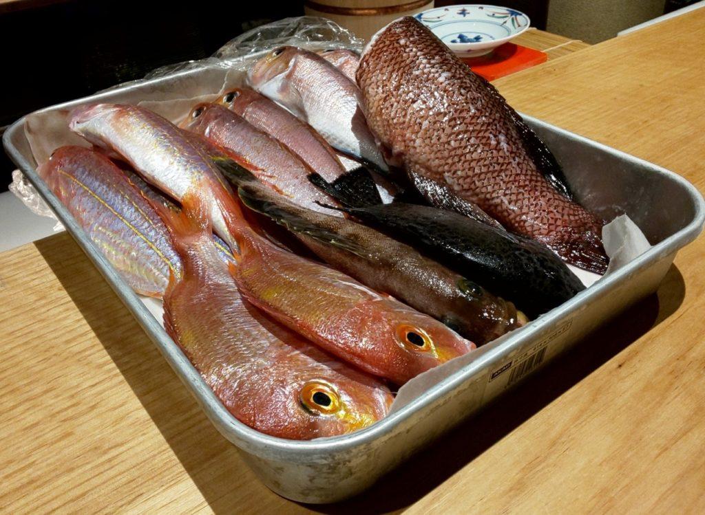 鮨割烹海宮の魚