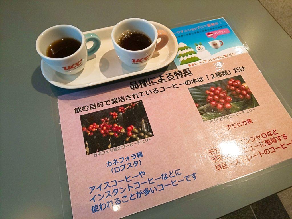 UCCコーヒー博物館の品種の説明